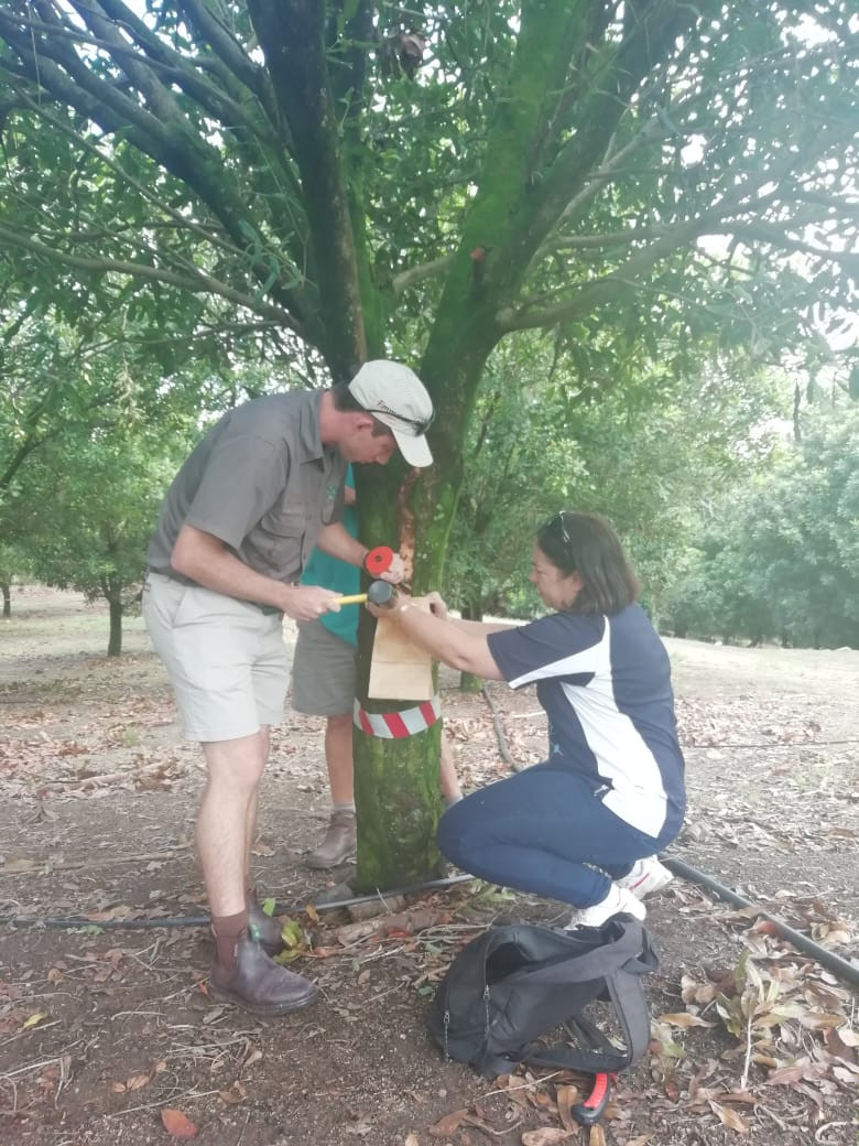 Dr Gerda Fourie collecting samples